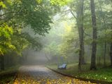 Мне не вернуть тебя... Я знаю,но шелест листьев и дождинок звон.напомнят о тебе..