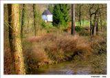 Веймар. Парк на реке Ильм.  Виден садовый дом Гете, где великий поэт жил с 1776 по 1782 годы. Дом был подарен Гете герцогом Карлом Августом.
