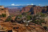 ...Национальный парк Canyonlands...