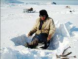 Арктический холод быстро сковал реку льдом, а бушевавшая целую неделю метель укрыла ее толстым снежным покровом. Наконец выглянуло долгожданное солнце и началось счастливое  время для любителей подледного лова. А время, проведённое на рыбалке, как известно, в счёт жизни не идёт.