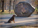 Во время прогулки по парку... Немного сказкой про Нарнию повеяло... Приятного просмотра