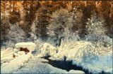 Зимняя испарина вокруг термального целебного источника. И, чем сильнее морозы, тем пушистее шубки. Бурятия.------------------------ВСЕХ с наступающим Новым годом! Удачи и творческих успехов!