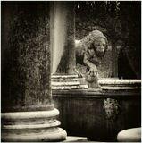 Львиный каскад в Петергофе...