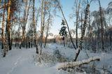 В погожий зимний день гулял я по лесу, дышал морозным воздухом, пытаясь хоть ненадолго забыть о прелестях городской жизни. Вышел на лёд большого пруда, выцеливая заснеженные сосны и берёзы, которые осчастливил новогодним макияжем январский закат, и вдруг приметил, что неподалёку обрываются чьи-то следы. Резко, раз – и нет. И вроде некуда их хозяину деться! Отправился я по следу в обратную сторону, но так ничего и не понял. Зато размялся на славу!