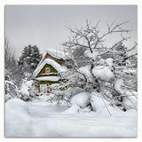 .. домики в старом садоводстве ждут своих хозяев, которые после этих снегопадов не спешат их навещать ..