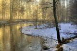 Январь. Туман весь день и в полдень сверкнуло солнце...!Canon EF 17-40 L