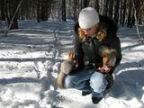 Зима, белки, снег
