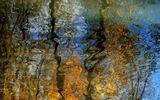 ...мгновение осени, река, поток сознания...