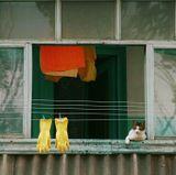 """:)из дверей балкона неслось: """"Собакааааааааааааа...опять в тапкииииииииииии!!!!Гулять неелю не пойдёшь!!"""":)"""