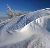 зима, снег, январь