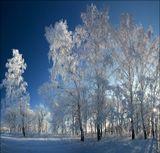 Фото клуб обладателей фототехники Canon EOS!http://clubs.ya.ru/4611686018427388821/http://vkontakte.ru/club23573778