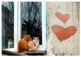 :)С Днём Влюблённых!Пусть это будет взаимно...И радостно...И всеобъемлюще...:)_____Зенитар-вырвирыбеглаз 16/2.8