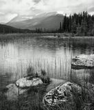 Канада, фотосафари