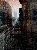 У природы нет плохой погоды -Каждая погода благодать.Дождь ли снег - любое время годаНадо благодарно принимать.Отзвуки душевной непогоды,В сердце одиночества печать,И бессонниц горестные всходыНадо благодарно принимать.Смерть желаний, годы и невзгоды -С каждым днём всё непосильней кладь,Что тебе назначено природойНадо благодарно принимать.Смену лет, закаты и восходы,И любви последней благодать,Как и дату своего уходаНадо благодарно принимать.У природы нет плохой погоды,