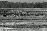 осень снег поле