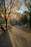 город, осень, сквер, утро, солнце