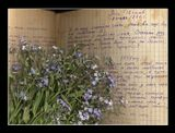 Девчонка дневник писала:О жизни своей,о любви...