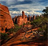 ... Arches National Park...