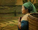 Сев.Вьетнам.Бак Ха.Хмонги.