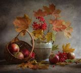 Калина, яблоки,осеньБЛАГОДАРЮ ВСЕХ ЗА ВНИМАНИЕ!