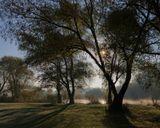 Утро, солнце, река, туман