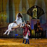 Снимок сделан со зрительской трибуны во время представления.http://www.apassionata.com/dach/