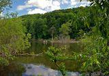 Река Протва в районе Боровска,Калужская область.природа,река,лес,весна