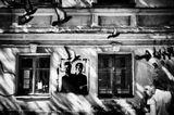 """Сама собой сложилась серия про стрит-арт,благо его тут есть,в Петербурге.Немного по-другому взгялнула на граффити  после фильма  """"Выход через сувенирную лавку"""".Преинтересно оказалось.*Поделюсь с интересующимися."""