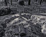 или последствия необъявленной войны.Снимок сделан в Брянских лесах.