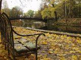 Парк и пруд в Смоленске