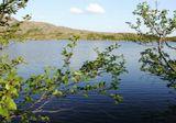 природа,ortodoxel,озеро,ветви,север