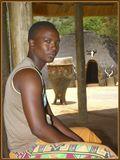Молодого зулуса удалось сфотографировать около его хижины. На просьбу показать его жилище сказал, что белых он к себе в дом не пускает. Так и осталось неизвестным: то ли он ненавидит бывших колонизаторов, то ли жена там еще не прибралась.