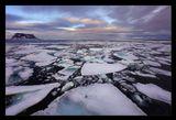 """Земля Франца-Иосифа, Северный Ледовитый Океан, о.Белл, июль 2011, экспедиция на ледоколе """"Капитан Драницын"""""""