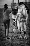 """Кличка коня """"Замысел"""" ))) Называют """"Мышка"""""""