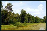 парк красногорск пруд