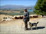 Испания. Окрестности Гранады. Пастух.