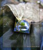 МакросЪемка капельки льда на ножке лежащего в ручейке листика...