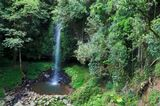 Crystal Fall, Dorrigo National Park, Gondwana rainforest, Australia