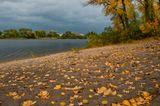 Осень в Гидропарке.Киев