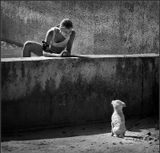 Гуляла девочка с собакой ...девочка, собака