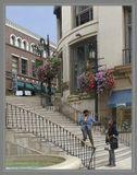 Обитатели калифорнийского городка Беверли-Хиллз стараниями Голливуда приобрели славу самых обеспеченных и счастливых жителей страны.