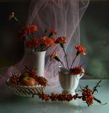 Облепиха-Осень: Сердолик в ветвях, В праздничном наряде На семи ветрах… Облепиха-Сказка: И, на кураже, Золотые штучки В стиле Фаберже…
