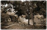Развалины древнего города индейцев майя в Копане. Гондурас.