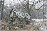 Старые дома - как люди... Хозяев уж давно нет, и деревни нет, а падать все-равно не хочется...