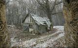 Здесь живут лешие, кикиморы, бабки-ежки, а вот людей уже давно нет...