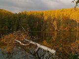 оз.Конан - ер. Марийская респ. Осень.