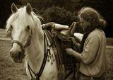 """Всадник в битвенном наряде,В золотой парче,Светлых кудрей бьются пряди,Искры на мече,Белый конь, как цвет вишневый.Блещут стремена...На кафтан его парчевыйПролилась весна...Александр Блок """"Дали слепы, дни безгневны..."""""""