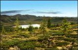 Как дОроги в наше неспокойное время такие кусочки природы, в которых можно забыть обо всем и просто наслаждаться тишиной и покоем! --------------------------- Окинский район. Бурятия.