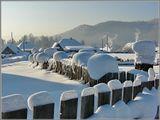 Ну и ветер! Ну и ветер!До чего ж силен и весел!Шапки снежные расвесилНебывалой красотыНа ограды и кусты.Там, где летнею пороюВ маргаритках нежный луг,Нынче снежной пеленоюЗатянуло все вокруг.Все покрыли белым цветомВетер, вьюга и мороз.Отчего ж зимой — не летом -У меня краснеет нос?    (Уолтер Де ла Мэр)зима снег деревня