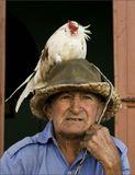 """Друзья настоятельно советовали Хемингуэю покинуть Кубу и перебраться в Америку. Ехать он не хотел...Но там, он написал """"старика""""??, получил Нобелевскую премию...И покончил жизнь самоубийством..Возможно, во всем виноваты гены..."""